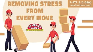 Photo of Best Moving Tips from Movers in Toronto